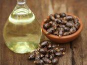Aceite de Ricino: Provecho, usos y toxicidad