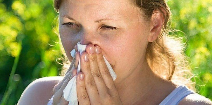 Antihistamínicos Naturales: 10 configuraciones para eliminar los síntomas de la Alergia