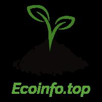 Ecologia, sostenibilidad, renovables y mucho mas.