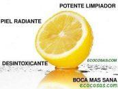 5 formas saludables de utilizar los limones por sus provecho