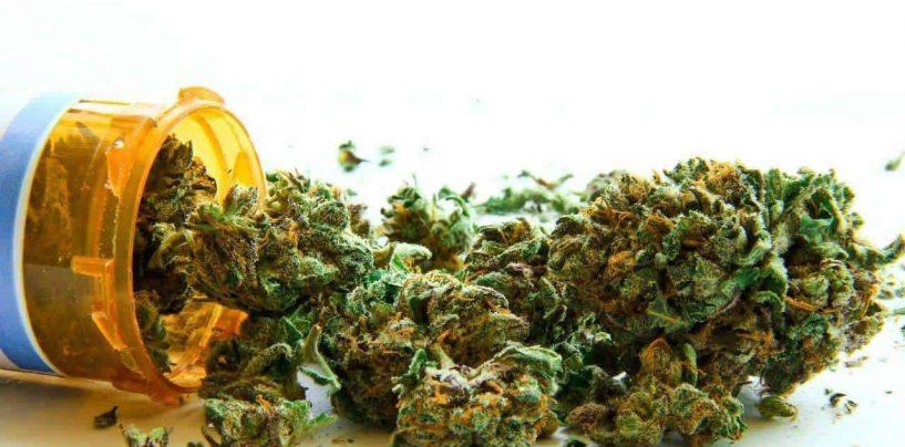 Cannabis medicinal, empleo terapéutico de la planta mariguana