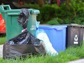 17 pasos para achicar la basura de nuestro lugar de vida en hasta un 80%