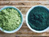 Spirulina y Chlorella: conoce las diferencias y los provecho